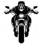 Urban Motorcycling